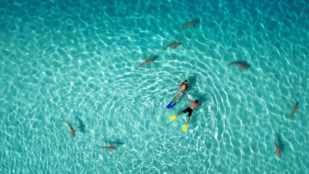 Les 10 plus belles photos de 2015 prises à l'aide d'un drone 1st-Prize-Category-Nature-French-Polynesia-by-Tahitiflyshoot--1024x575