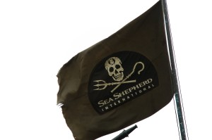 A la découverte de Sea Shepherd Seashepherd_small_pt-300x199