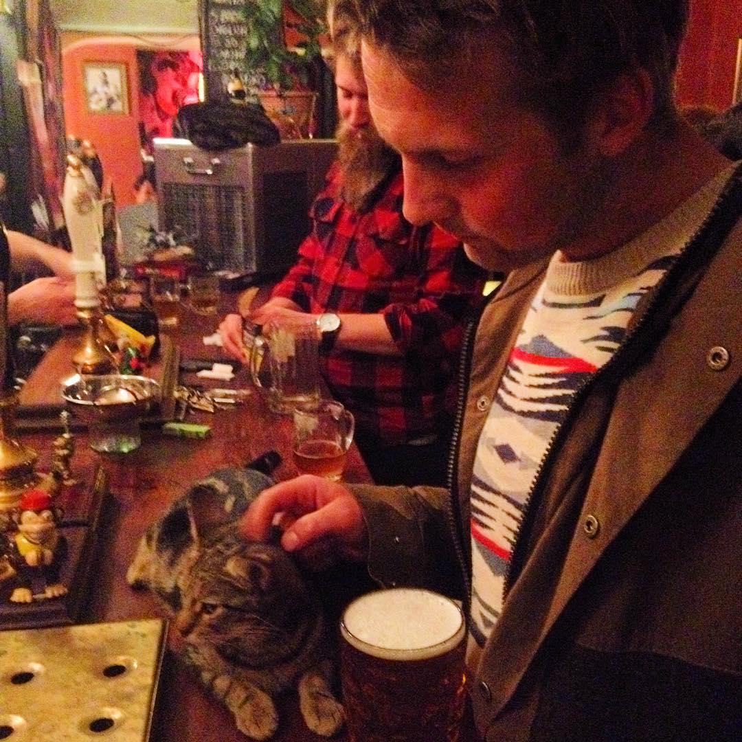 Les chats sont les rois dans ce pub en Angleterre bar-a-chat-1