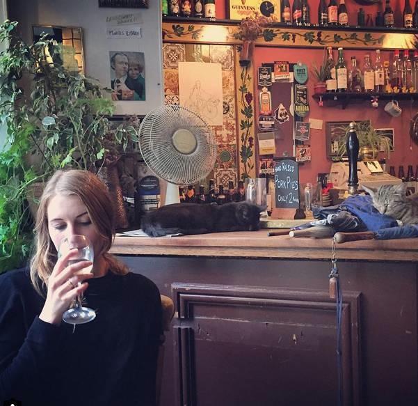 Les chats sont les rois dans ce pub en Angleterre bar-a-chat-2