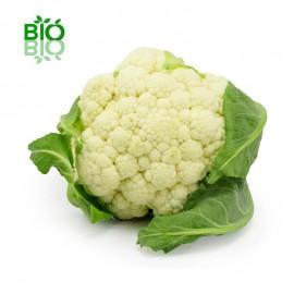Mangeons du chou-fleur chou-fleur-bio-1
