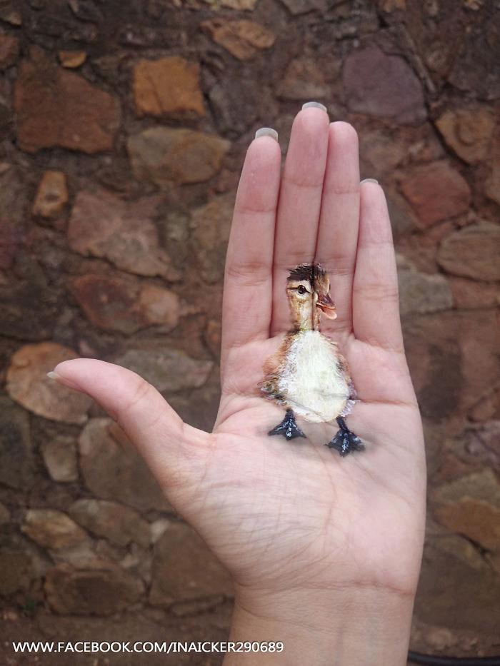 Cette jeune fille réalise des peintures en 3D sur la paume de sa main peinture-3D-paume-main-9